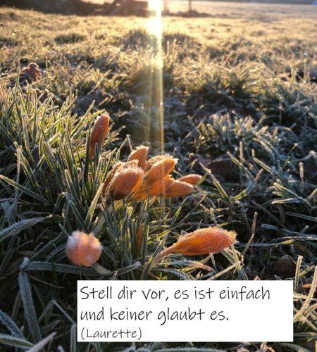Winterblumen Stell dir vor...
